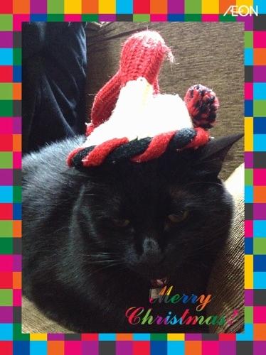 黒猫サンタ