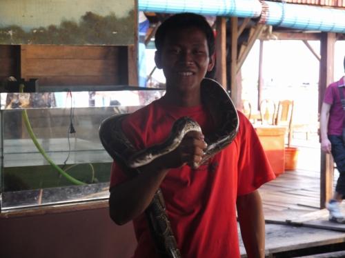 また蛇だよ・・・。